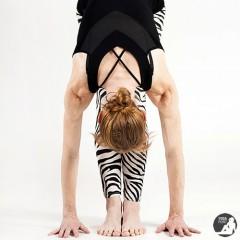 domácí jógová praxe