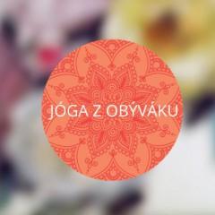 joga-z-obyvaku11