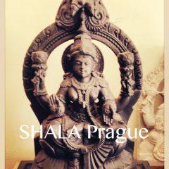 Shala Prague Kurz Začátečníci