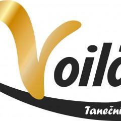 Logo TS Voila