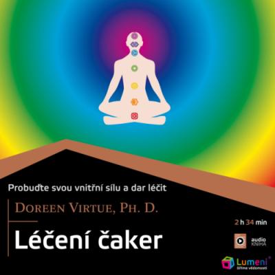 leceni-caker